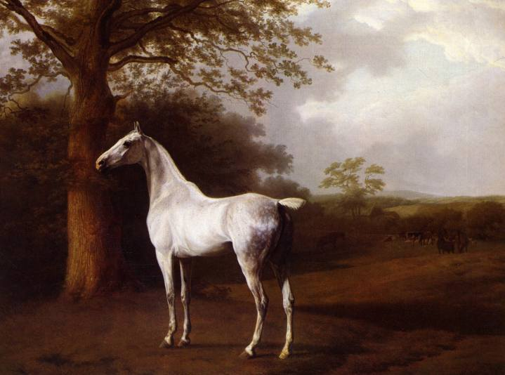 L'art équestre au XIXesiècle