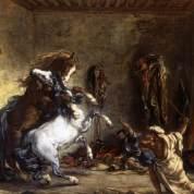 Chevaux arabes se battant à l'écurie.
