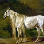 Le cheval blanc.