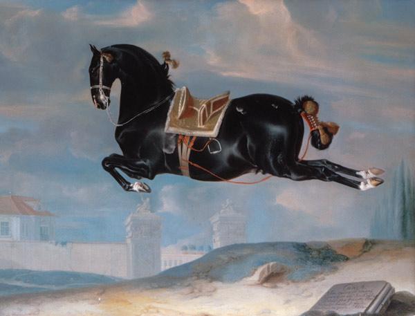 L'art équestre aux XVIIe et XVIIIesiècles