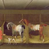 The Stables and Two Famous Running Horses belonging to His Grace.