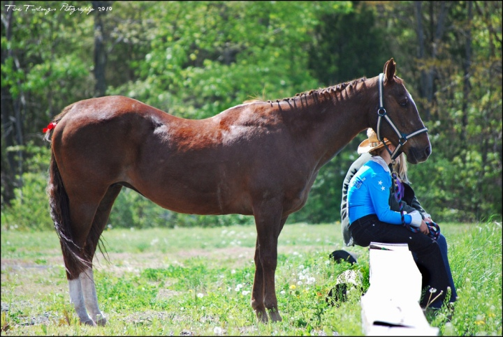 Décontraction et sac à dos, les principes posturaux du cheval et du· de lacavalier·ère